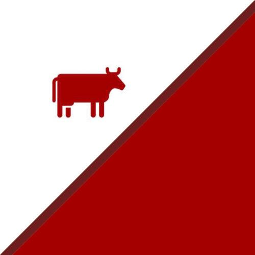 Carnes y embutidos